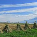 Photos: 藁ぼっちとライオン雲と。