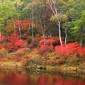 Photos: 一沼、紅に燃える。