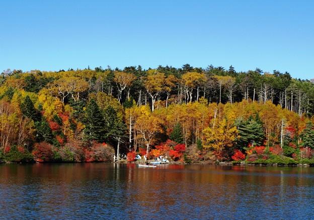 紅葉楽しむ向こう岸。