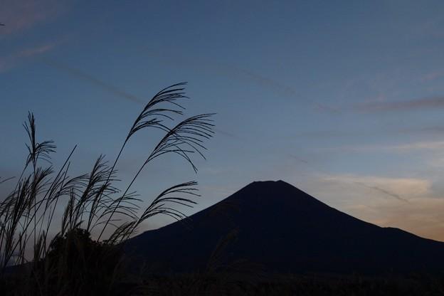 Photos: 日没シルエット。