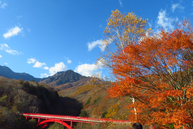 紅葉と赤い橋。
