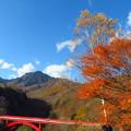 Photos: 紅葉と赤い橋。