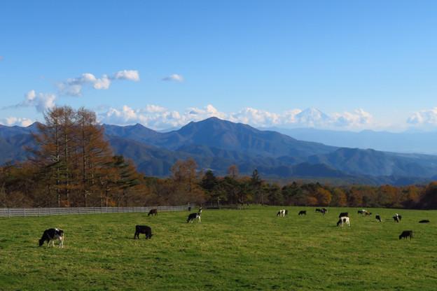 秋深まる牧場から。