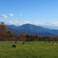 Photos: 秋深まる牧場から。