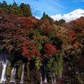 晩秋の滝の彩。