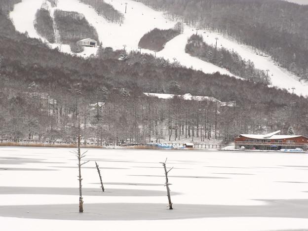 氷る湖とスキー場。