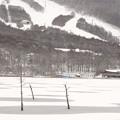 Photos: 氷る湖とスキー場。