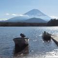 初春きらきら精進湖。