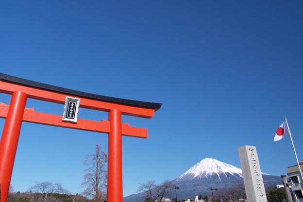 初詣、富士山本宮浅間大社。