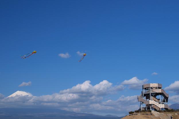 凧たこ上がれ、田子の浦。