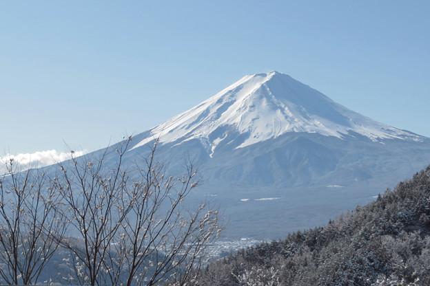 雪の華咲く御坂峠。