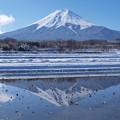 Photos: 真冬も氷らぬ田んぼには。