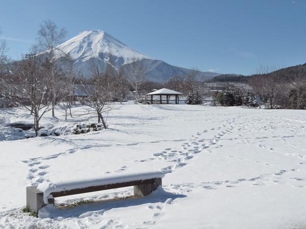 雪のベンチからの足跡。