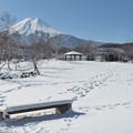 Photos: 雪のベンチからの足跡。