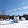 氷の樹林と飛行機雲。