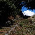 雑草の坂道を上がった先に。