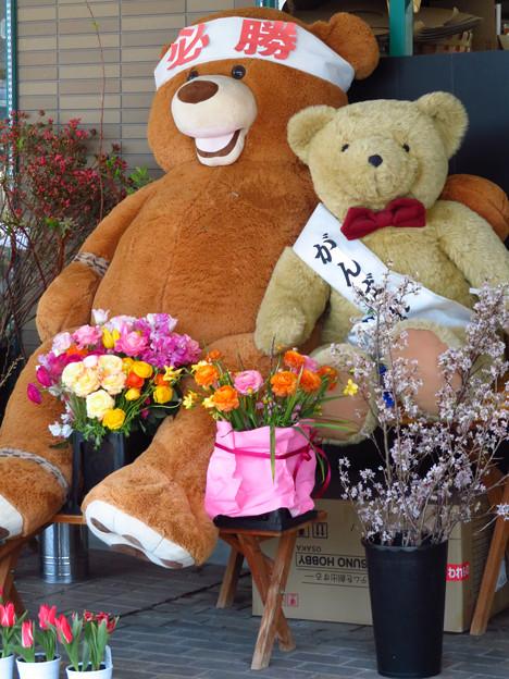 Photos: がんばったから花束を。