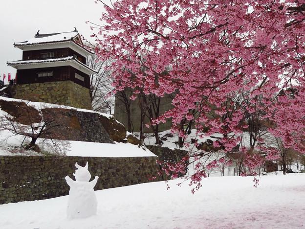一面雪に、桜の櫓下。