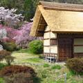 水車小屋と賑わうお庭。