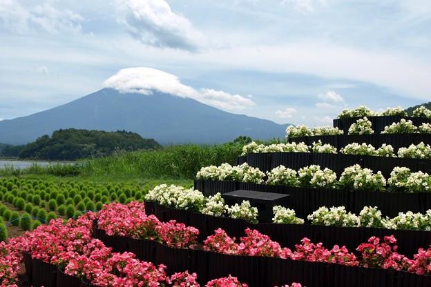 ベコニア小富士越しに。
