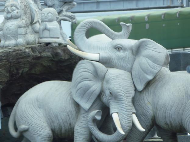 街で見つけた象の像だぞう。