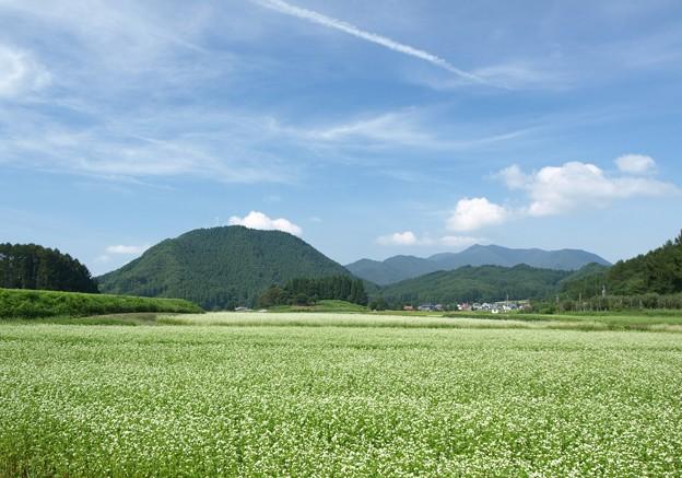 そば畑と終わりの夏の空模様。