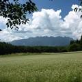 Photos: そば畑から戸隠連山。