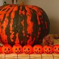 Photos: デカかぼちゃとランタン。