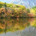 Photos: 鏡池、秋に賑わいの色。