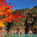 Photos: ダム湖も盛りのもみじ日和。