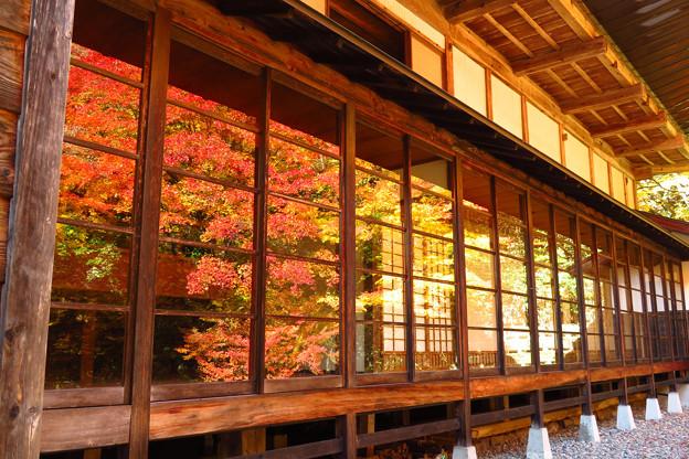 映り込む深い秋。