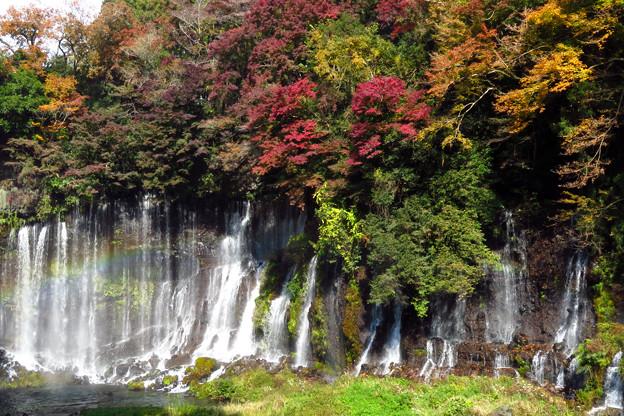 滝飾る紅葉。