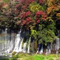 Photos: 滝飾る紅葉。