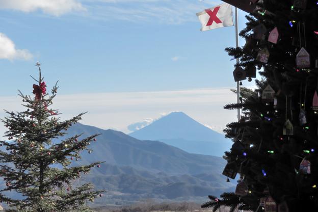 山並み見下ろすクリスマスツリー。