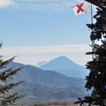Photos: 山並み見下ろすクリスマスツリー。