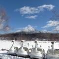 Photos: 白樺湖はすっかり冬模様。
