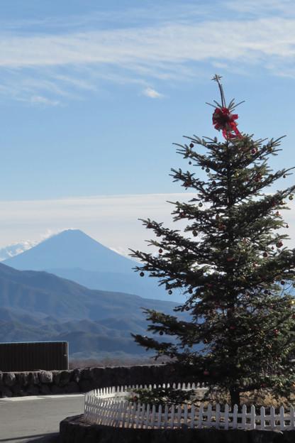 雪なしクリスマス。