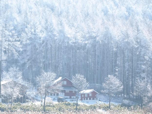 寒さの中の温かな家。