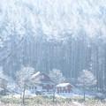 Photos: 寒さの中の温かな家。
