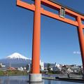 快晴お正月、富士山本宮大鳥居。