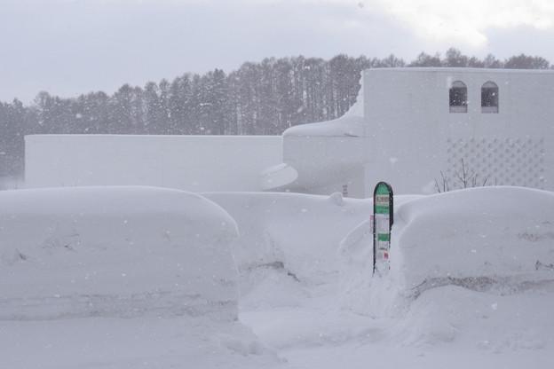 雪深き県立美術館前バス停。