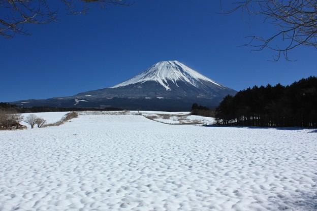 Photos: 雪原、雪の波。