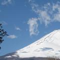 新雪に雲の陰。