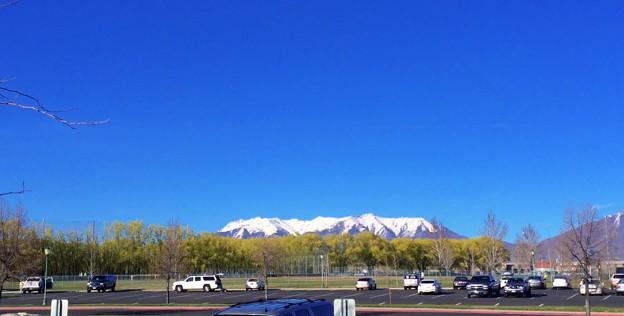 青空と冠雪と若葉