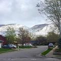 Photos: April Snow