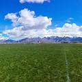 写真: Field...