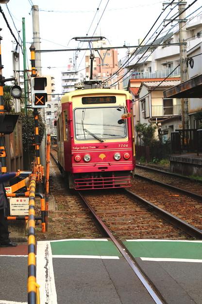 Photos: ピンクの電車♪