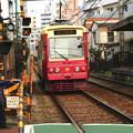 ピンクの電車♪