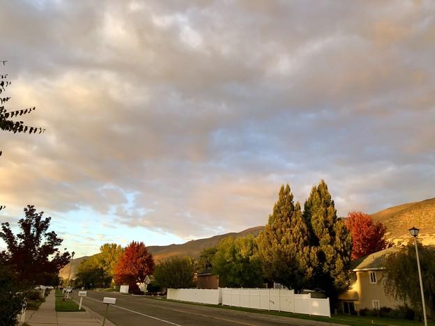 お散歩スナップ。。秋の夕空