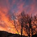 Photos: たった今の朝焼け。。